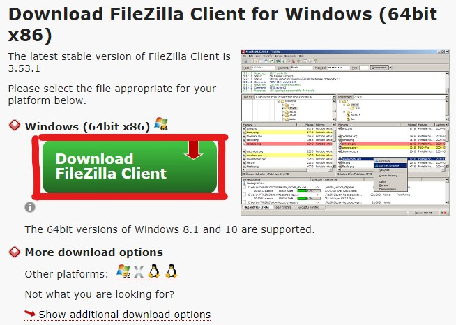 Windows(64ビット版)のダウンロードボタン